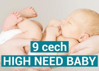 jakie sa cechy High Need Baby