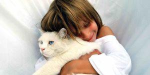 Jakie zwierzę dla małego alergika. Koty i psy, który nie uczulają