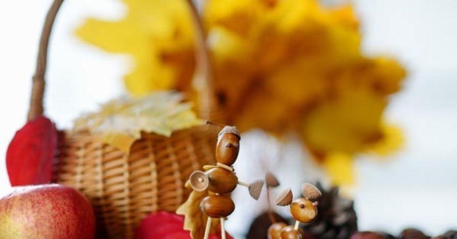 jesień, jesienne zabawki, zabawy z dzieckiem jesienią