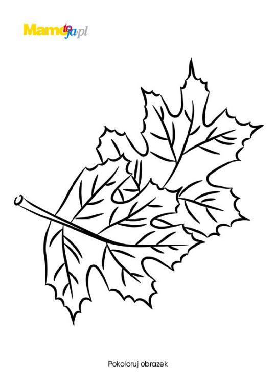 jesień kolorowanki liść