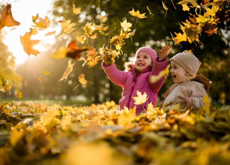 Jesienny spacer po odporność Sambucus