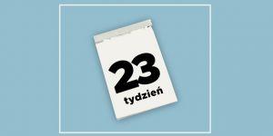 kalendarz ciąży: 23 tydzień