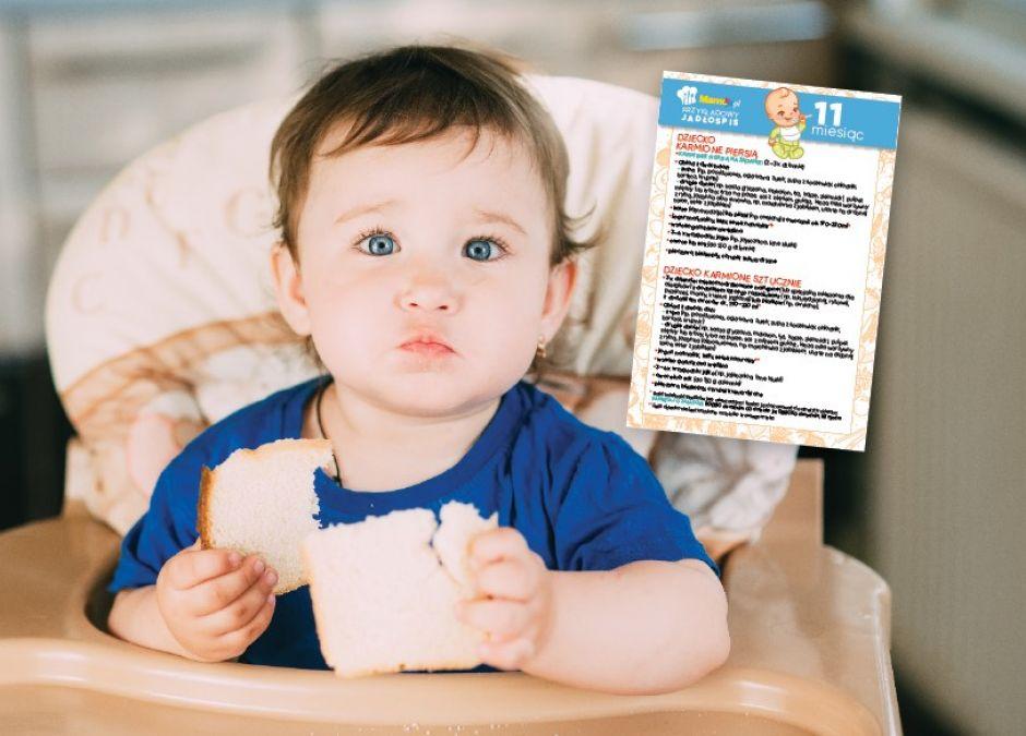 karmienie dziecka 11 miesiąc