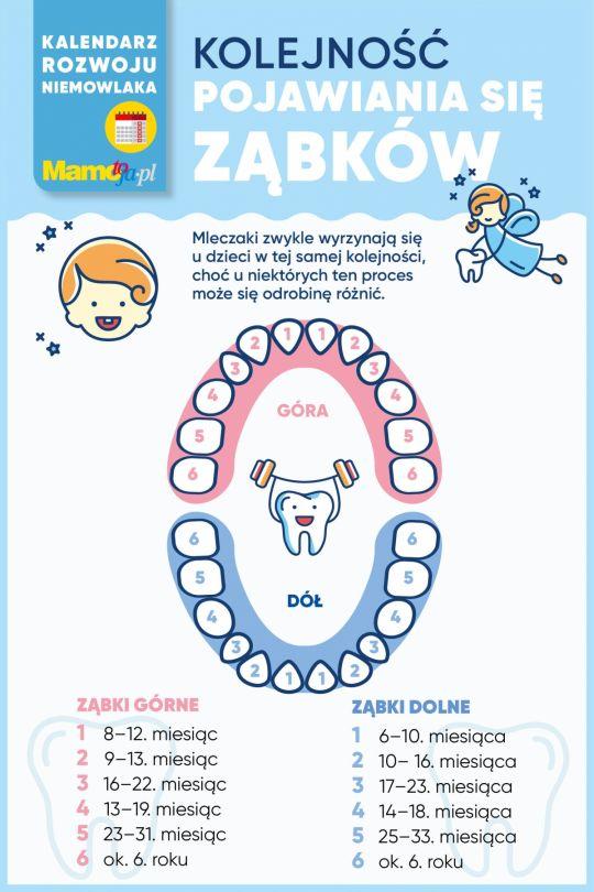 schemat ząbkowania