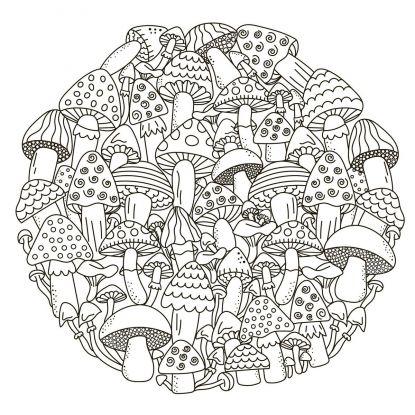 kolorowanki grzyby - kolaż