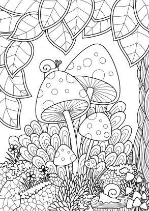 kolorowanki grzyby - ślimak