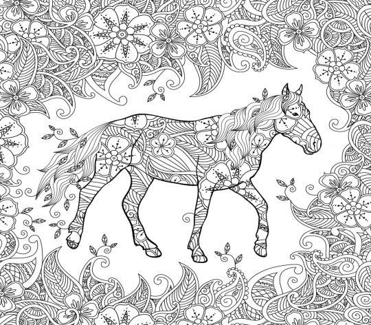 kolorowanki konie odstresowująca