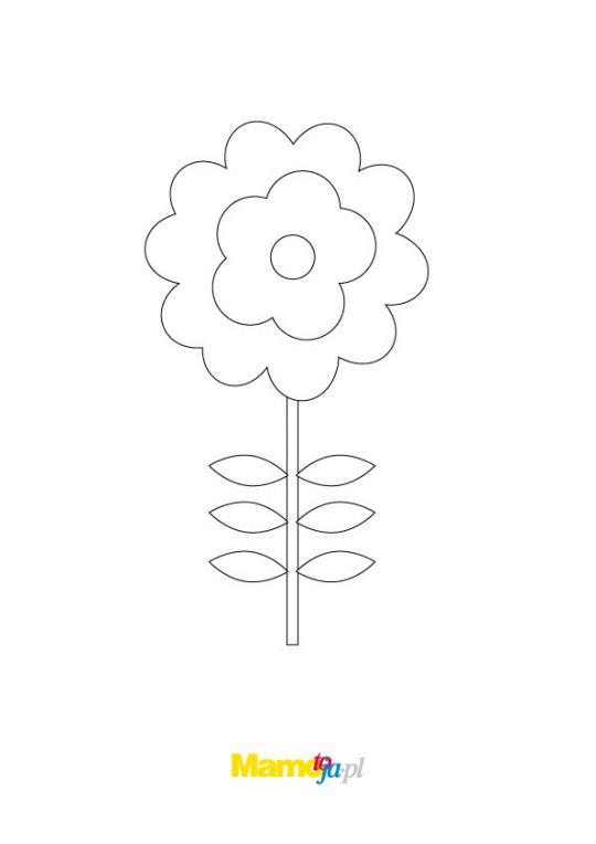 kolorowanki kwiaty stokrotka