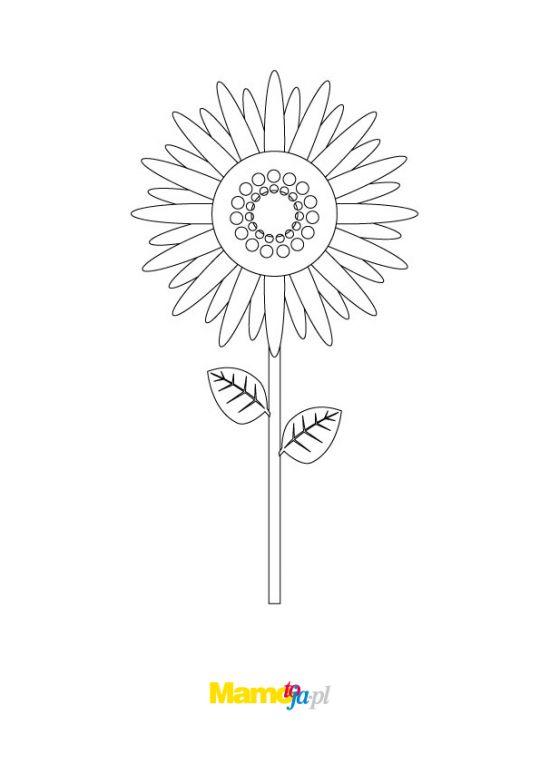kolorowanka szalony kwiat