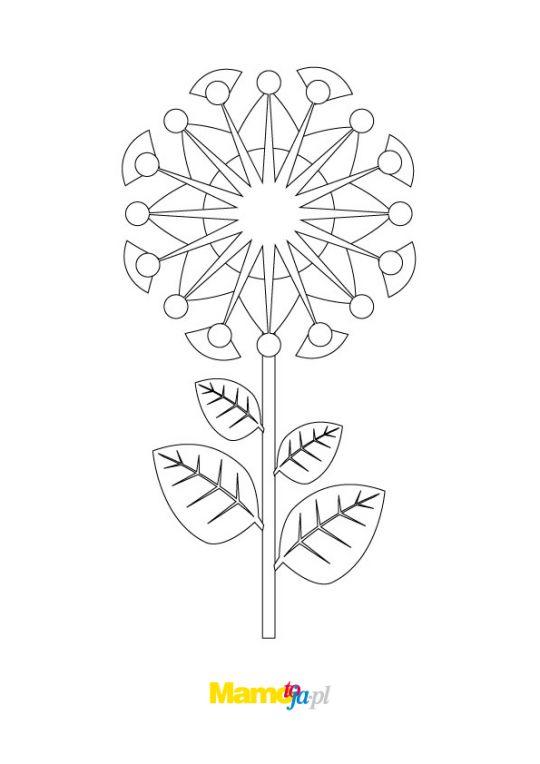 kwiaty kolorowanki szczegółowe