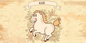 koń, horoskop chiński, horoskop dla dzieci