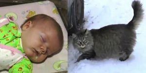 Kot uratował niemowlę