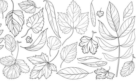 Jesienne liście do druku