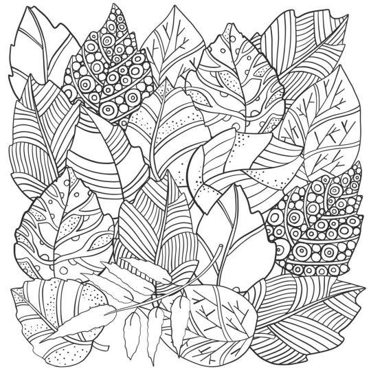 Szablony liści do wydrukowania