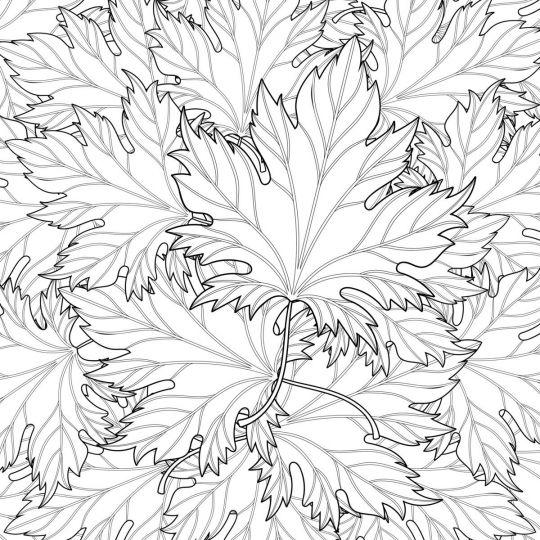 Kolaż z jesiennych liści do wydrukowania
