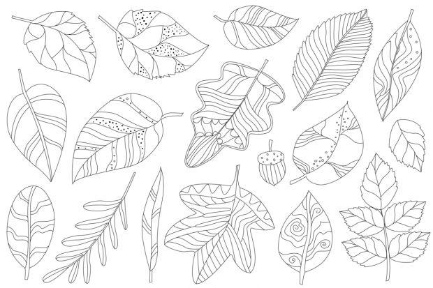 jesień kolorowanki liśćie