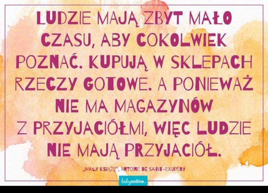 Mały Książę Cytaty Memy Do ściągnięcia Strona 11 Mamotojapl