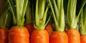 marchew, przepisy dla dzieci, kotlety z marchewki
