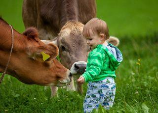 na wsi zdrowiej dla dziecka niż w mieście