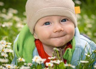 niemowlę, dziecko, łąka, kwiaty, uśmiech dziecka