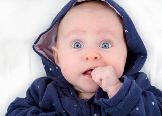 niemowlę, bluza, wyprawka, ubranko dla niemowlaka