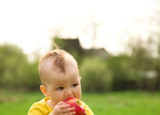 niemowlę, lato, kuchnia, przekąska, jabłko, owoc
