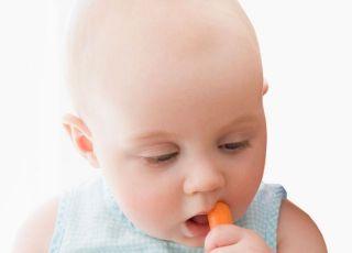 niemowlę, marchewka, gryzienie