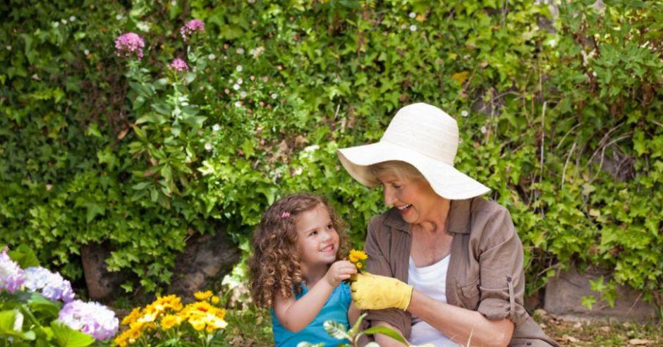 ogród, dziecko, kwiaty