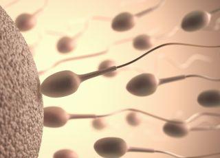 Oligospermia - jedna z najczęstszych przyczyn męskiej niepłodności