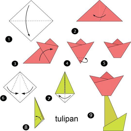 origami dla dzieci tulipan