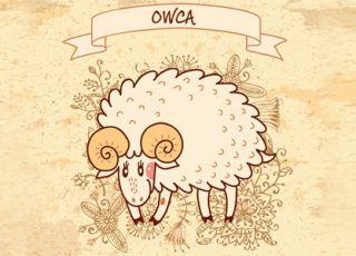 owca, horoskop chiński, horoskop dla dziecka