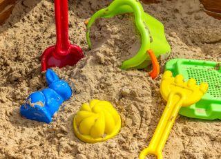pasożyty w piaskownicy
