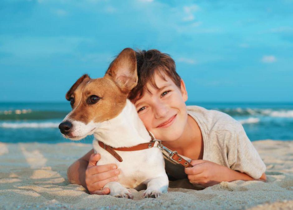 Pies najlepszym przyjacielem dziecka?