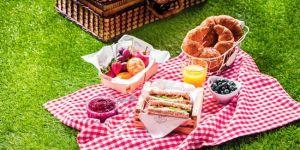 piknik, piknik z dzieckiem