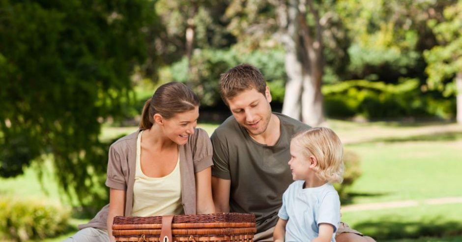 piknik, rodzina, dziecko, wiosna, majówka
