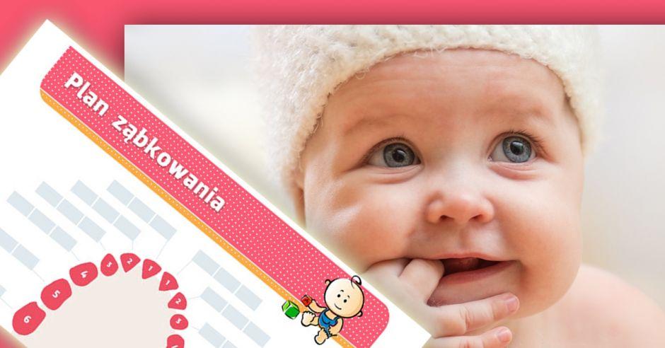plan-zabkowania-niemowlecia