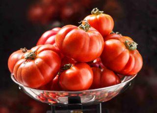 Dlaczego karmiąca mama powinna jeść pomidory?