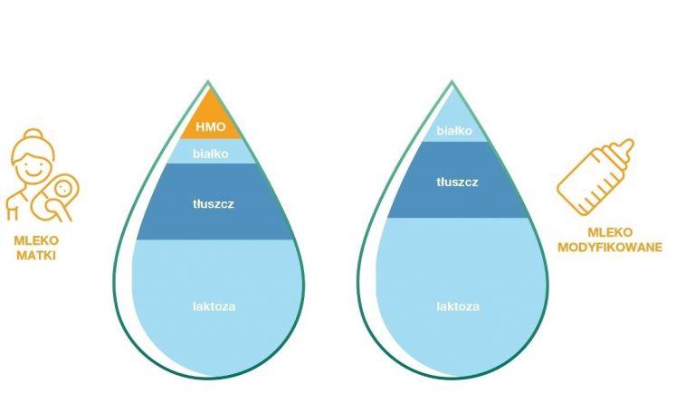 Porównanie składów mleka kobiecego i modyfikowanego - inforgrafika