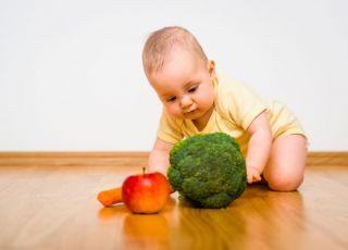programowanie żywieniowe