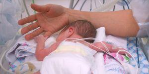 przeszczep niemowlę