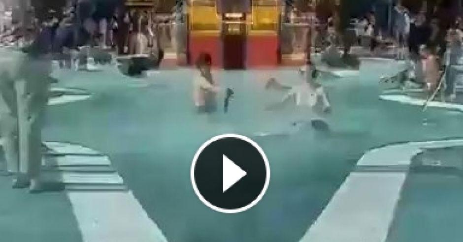 Psy na basenie