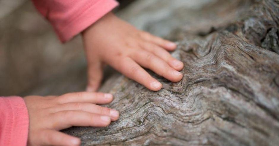 Rączki dziewczynki: jak wygląda świat oczami dziecka?