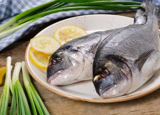 ryby drapieżne