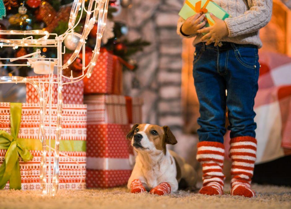 skarpetki świąteczne dla dzieci