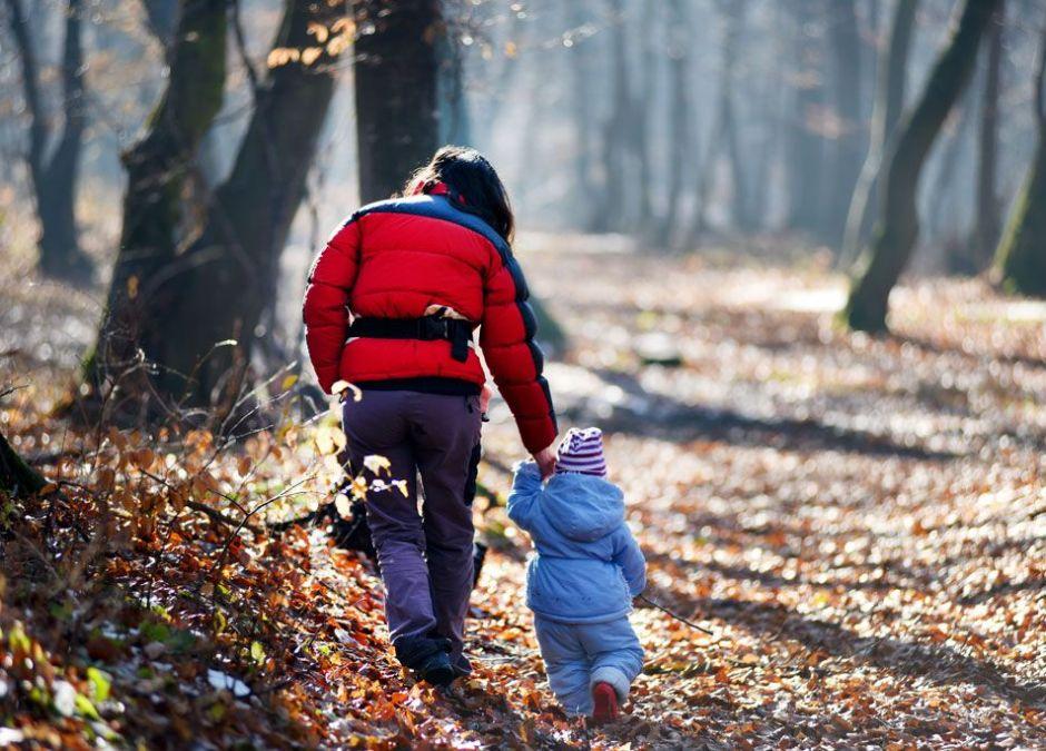 spacery z dzieckiem po lesie