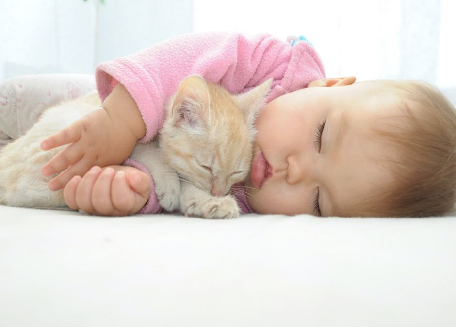 śpiące niemowlę z kotem