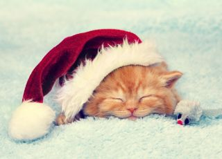 świąteczne prezenty