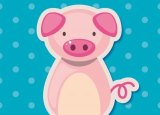 świnia horoskop chiński