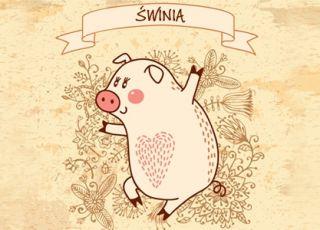 świnia, horoskop chiński, horoskop dla dziecka