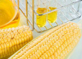 Czy syrop glukozowo-fruktozowy powoduje otyłość?